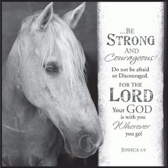 Be Strong and Courageous Horse Joshua 12 x 12 Inch Wood Wall Art Sign Plaque Scripture Verses, Bible Verses Quotes, Bible Scriptures, Faith Quotes, Healing Scriptures, Faith Bible, Inspirational Horse Quotes, Inspirational Message, Motivational Quotes