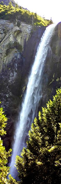 Bridal Veil Falls, Yosemite Bridalveil Fall is one of the most prominent waterfalls in the Yosemite Valley in California, seen yearly by millions of visitors to Yosemite National Park. The waterfall is 188 metres (617 ft) in height and flows year round.