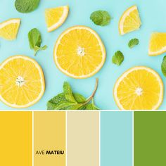 Sliced orange and mint leaves pattern Color Palette #270 – Ave Mateiu -  Summer 2020, color palette, color palettes, colour palettes, color scheme, color inspiration, color combination, art tutorial, collage, digital art, canvas painting, wall art, home painting, photography, weddings by color, inspiration, vintage, wallpaper, background, rustic, seasonal, season, natural, nature