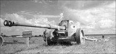 88 mm Panzerabwehrkanone 43 L/71, developed by Krupp --- The 88 mm PaK 43 L/71, was also the main gun of the heavy Panzerjägers.