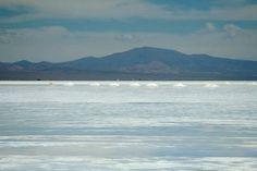 Salinas Grandes, Puna de Atacama. Extención 212 km², altitud promedio 3450 msnm. Por el sur y el este, está separada de la Quebrada de Humahuaca por la sierra del Chañi. Por el norte y el oeste limita con el desierto de la Puna Salada. El origen data de entre 5 y 10 millones de años a. p., plazo en el cual la cuenca se cubrió de aguas con sales provenientes de la actividad volcánica, y la evaporación paulatina dio origen a este salar que posee una costra cuyo espesor promedio es de 30 cm