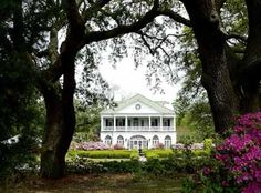 Beautiful Lowndes Grove Plantation in Charleston, South Carolina