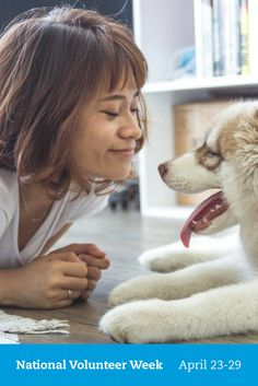 Medium-sized hypoallergenic dogs are becoming more popular these days among pet lovers. This list of medium-sized hypoallergenic dogs will . Dog Training Tips, Training Kit, Training Classes, Training Exercises, Dog Care, Pet Shop, Dog Owners, Pet Dogs, Dog Breeds