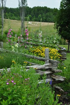 split rail fence and cottage garden - another style. : split rail fence and cottage garden - another style. Country Fences, Rustic Fence, Rustic Gardens, Farm Gardens, Fancy Fence, Split Rail Fence, Fence Styles, Cottage Garden Plants, Old Fences
