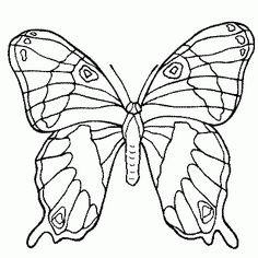 Free butterfly Mandala Coloring Pages. 30 Free butterfly Mandala Coloring Pages. Free Mandala Coloring Pages for Adults 3129 Adult Coloring Butterfly Coloring Page, Flower Coloring Pages, Mandala Coloring Pages, Animal Coloring Pages, Coloring Pages To Print, Free Printable Coloring Pages, Coloring Book Pages, Coloring Pages For Kids, Kids Coloring
