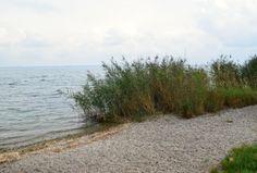 Chiemsee Fraueninsel Ufer