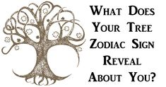 Celtic Druid Astrology: What Does Your Tree Zodiac Sign Reveal About You?