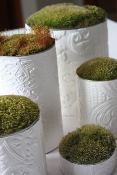 tin cans wrapped in wallpaper samples, filled with packing peanuts, and topped with live moss