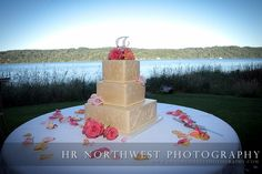 Such a beautiful backdrop for the cake table