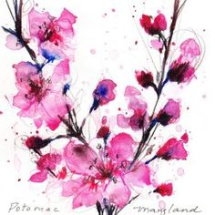 Watercolor Cherry Blossom Tattoo 1