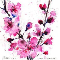 Watercolor Cherry Blossom Tattoo 1