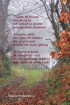 Modern Country, Country Life, Country Roads, Dutch Quotes, Poems Beautiful, Thing 1, Autumn Home, Autumn Fall, Hello Autumn