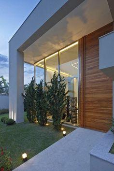 exotische bäume minimalistische vorgartengestaltung