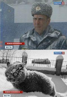 Южно-кокаинск