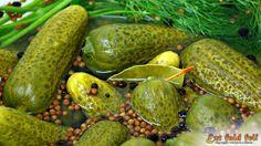 Ezt fald fel!: Csemege uborka télire eltéve – hordós csemege uborka