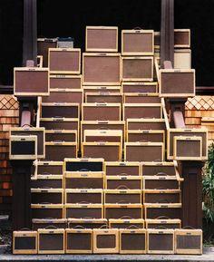 So. Many. Fender. Tweed. Amps.