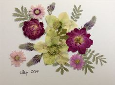 TAKEN - Pressed flower art for Elizabeth, with Lenton roses, silver leaf Cineraria, and some other things I don't know the name of.
