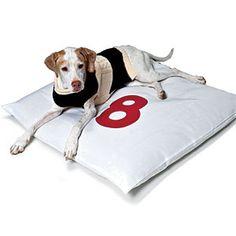 Coastal Pet Essentials | Fisherman Sweater and Sailcloth Dog Bed | CoastalLiving.com