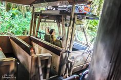 Parques de Orlando Kilimanjaro Safaris