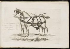 Sales Catalogue | Unknown | V&A Explore The Collections National Art, The V&a, Horse Drawn, Victoria And Albert Museum, Horses, Collection, Horse