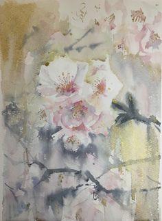 Sakura / Saye Amebane