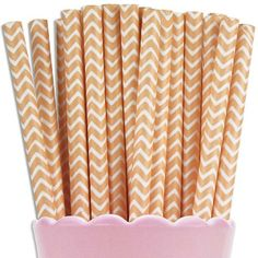 Peach Chevron Paper Straws