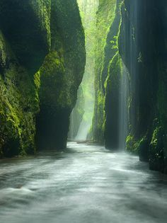 """It's not hard to see why they call it """"the Emerald Gorge""""! Beautiful! Columbia River Gorge, Oregon"""