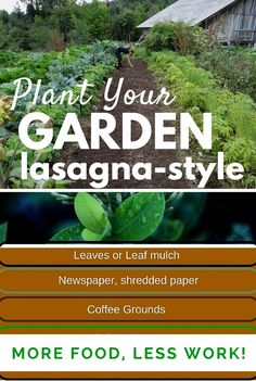 Capture rain, sort compost, and don't mow your lawn. Learn our secrets to lazy gardening!