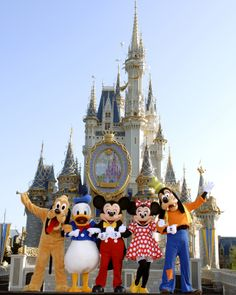 Top 5 Walt Disney World attractions - voted for by kids!!!