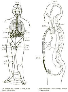 pericardium meridian fire yin  acupressure  acupuncture