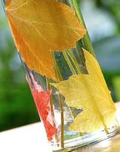 DIY Fall Leaf Candle Holder - can be used for vases, mason jars, bottles...what a lovely website