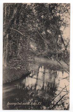 Canaseraga Creek near Mount Mt. Morris New York NY Postcard Livingston Co. 1912