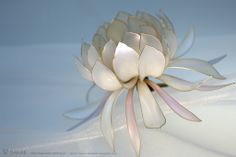 Photo by OSAMU YAMAZAKI ( pinterest.com/... )( imagedive.co.jp/ ) 簪作家榮 2013 月下美人簪 Japanese hair accessory - A Queen of the Night , Epiphyllum Oxypetalum Kanzashi - by Sakae, Japan
