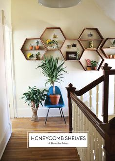 DIY Honeycomb Shelves | maybe a bit ambitious