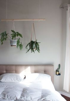 - How to Plant an Indoor Hanging Herb Garden Use the Miracle-Gro Indoor Plant Food to give your house plants the extra boost they need to grow. It's perfect for creating this hanging plant piece for your room. Photo courtesy of Paul Samples Home Bedroom, Bedroom Decor, Bedrooms, Bedroom Plants, Bedroom Ideas, Bedroom Ceiling, Decor Room, Bedroom Colors, Window Plants
