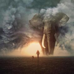 These Jaw Dropping Photo Manipulations Imagine A World With - These Jaw Dropping Photo Manipulations Imagine A World With Giant Animals Digital Artist From Australia Who Creates Epic Digital Photo Manipulations That Express His Love And Admiration For The Elephant Love, Elephant Art, Elephant Tattoos, Asian Elephant, Elephant Photography, Animal Photography, Spirit Photography, Surreal Photos, Surreal Art