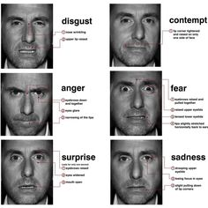 These images are of a man from a T.V. show called Lie to Me. The show is about a Dr., featured above, that is a facial expression expert. He makes his living off of determining whether people are lying or not based off of their facial expressions. Above lists some micro-expressions and what happens to different parts of the face to form these quick but honest expressions.  Here is another example of these micro-expressions.