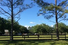 $1.85 million sale in Sarasota Ranch Club | Photo Galleries | HeraldTribune.com