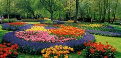 Градини Кукенхоф, Холандия