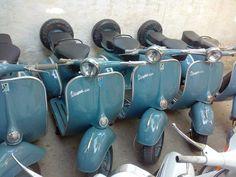 Vespa Purchased one just like this at Scooterama, Mobile AL Vespa Vbb, Piaggio Vespa, Vespa Scooters, Vintage Bikes, Vintage Vespa, Vespa Images, Scooter Garage, Vespa Sprint, Vw T1