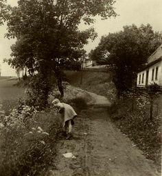 thehystericalsociety: Flowers along the path - c - (Via) Vintage Photo Album, Vintage Photos, Fine Art Photo, Photo Art, Great Photos, Old Photos, Wildwood Flower, Vision Of Love, Hollyhock