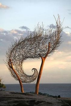 Wave shaped branch sculpture