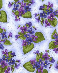 Arabella - Violet Bunch - Quilt Fabrics from www.eQuilter.com