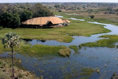 Botswana holiday packages with flights from South Africa to Chobe and the Okavango Delta or Moremi African Holidays, Safari Holidays, Okavango Delta, Game Reserve, Water Activities, Tour Operator, Beautiful Hotels, Holiday Travel, South Africa