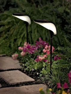 A very nice take on solar lights. Resembles an orchid. I would get these and place them strategically.