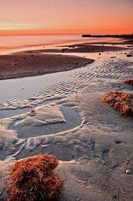 Madeira Beach Sunset and Seaweed.