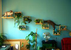 jardincito en interior