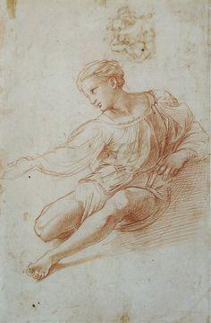 Raffarlo - Studio per la Madonna d'Alba - 1511-1513 - Palais des Beaux-Arts de Lille