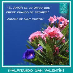 ¡Más romance para #SanValentín!