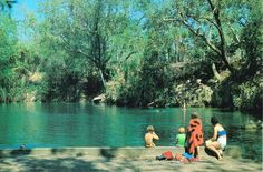 Berry Springs 1970s.